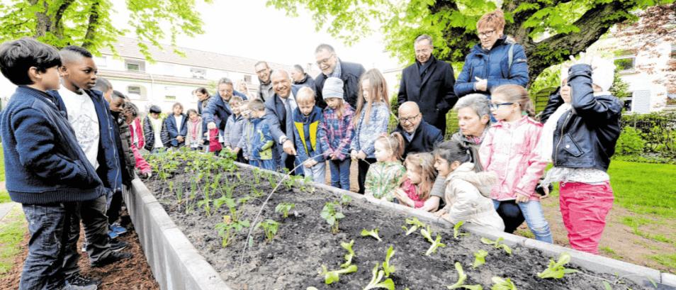 Artikel WAZ Naschgärten